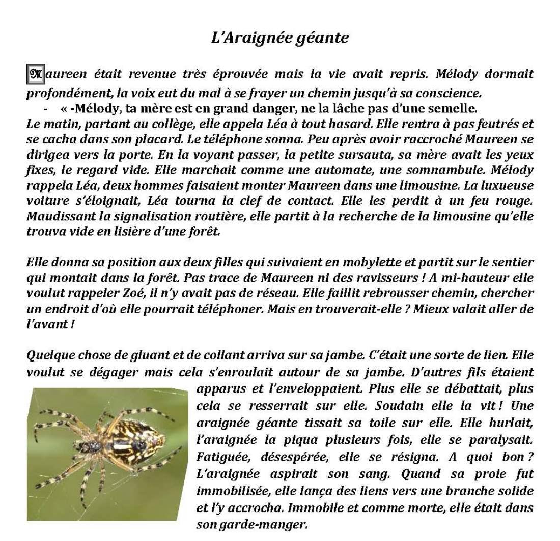 06-L'araignée